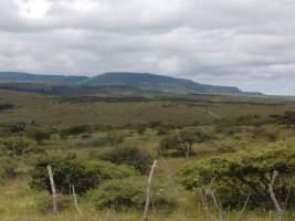 View of Cañada de la Virgen pyramid