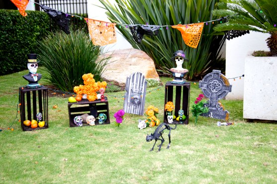 Halloween decorations. Photo by F. Bravo