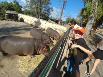 Leon Zoo, Leon, Guanajuato. Photo by Angela Grier