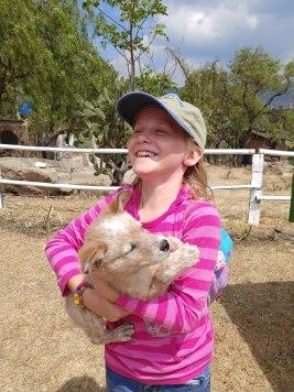 Pure joy with the puppy at Peña de la Bufa. Photo by Angela Grier