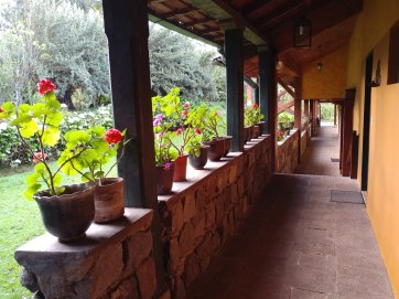 Hacienda la Alegria. Photo by Angela Grier